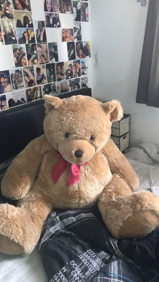 Large/Oversized Teddy Bear