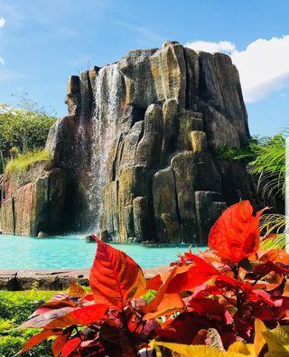 Piscinas, piscinas temáticas, cascadas, hormigón..