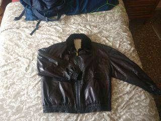 chaqueta zilli para hombre