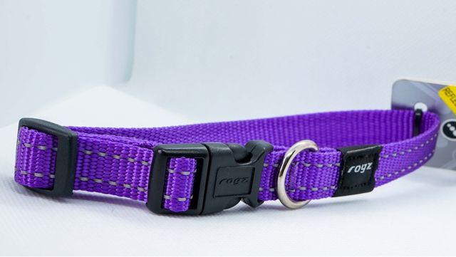 Collar perro nylon