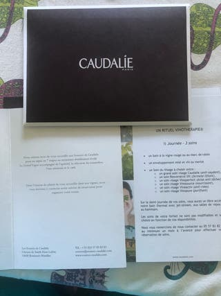 Pack Spa & Restaurant - Les sources de caudalie