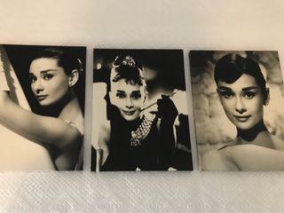 Cuadros Audrey Hepburn