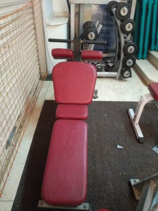 banco abdominales hammer strength