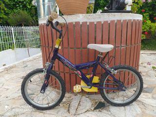 bicicleta Trotter