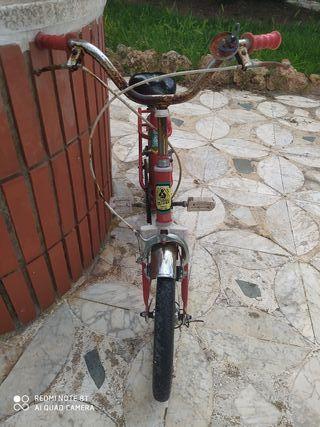 bicicleta Injusa