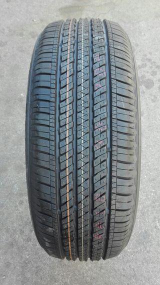Neumáticos 225/55 R19