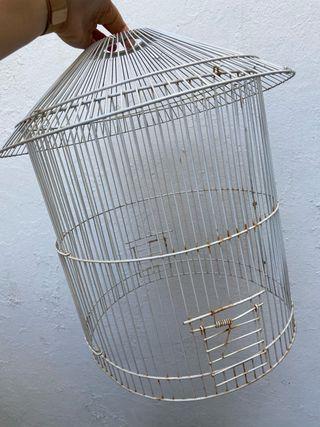 Jaula de pájaro de decoración