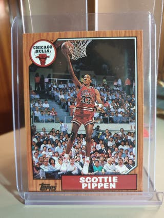 CHICAGO BULLS TOPPS SPECIAL 1993