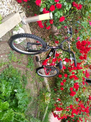 Bicicleta BMX Monty 105junior