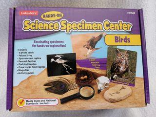 juego lakershore specimen centro de pajaros