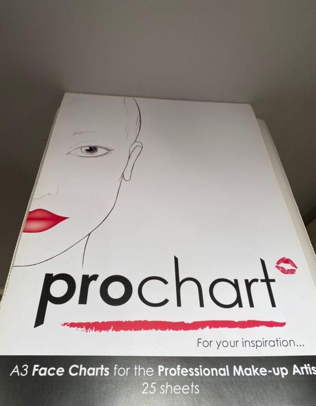 Pro chart makeup sheets