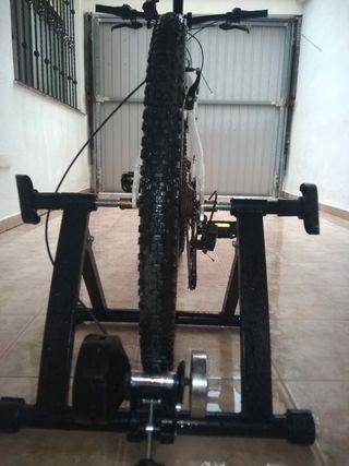 Bicicleta + rodillo giratorio 5 velocidades