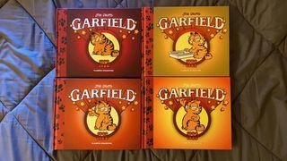 colección Garfield