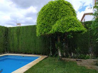 Jardinero en Granada