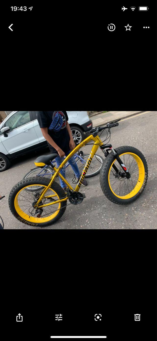 Italian golden fatbike