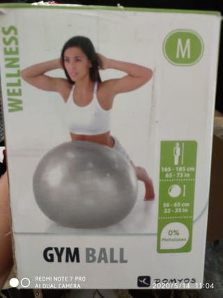 Gym ball, balón fitness