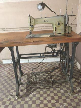 Máquina coser Alfa industrial