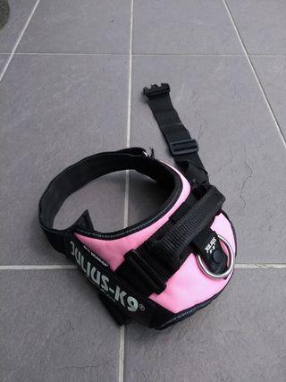 Arnés collar Julius-K9 IDC Power rosa perro