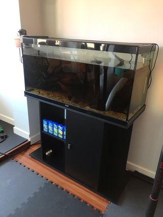 Pack acuario 150 litros