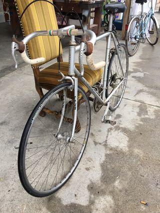 Bicicleta Zeus victoria New Racer