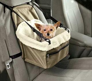 Transporte mascotas Con seguridad