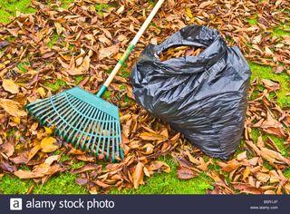 Recogida de hojas en fincas viviendas etc..