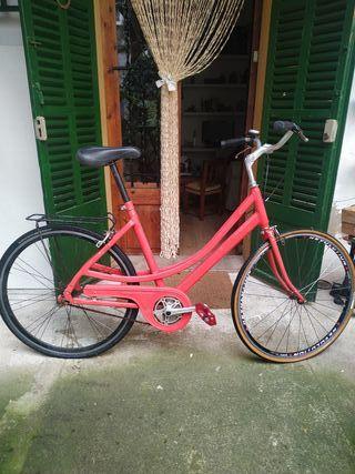 bicicleta holandesa paseo