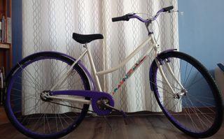 bicicleta paseo femenina.