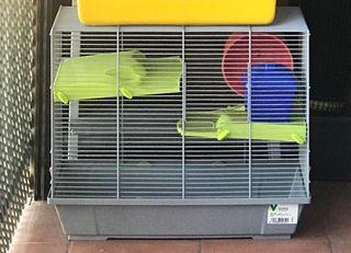 Jaula de roedores