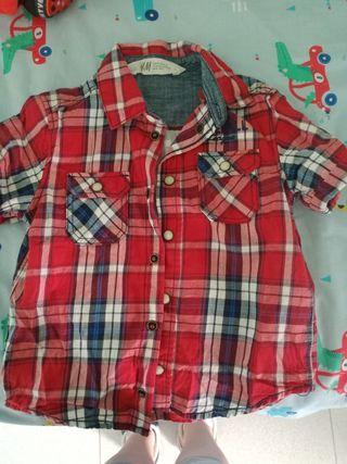 camisa mangas cortas