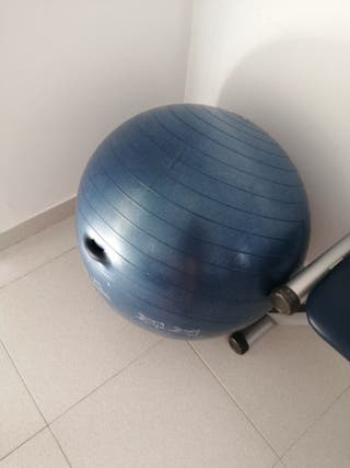 pelota de gimnasia