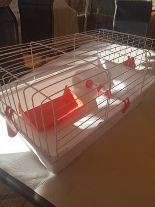 Jaula y transportin para roedores