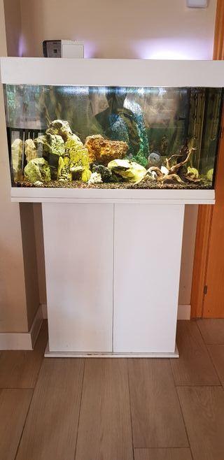 acuario 120 litros