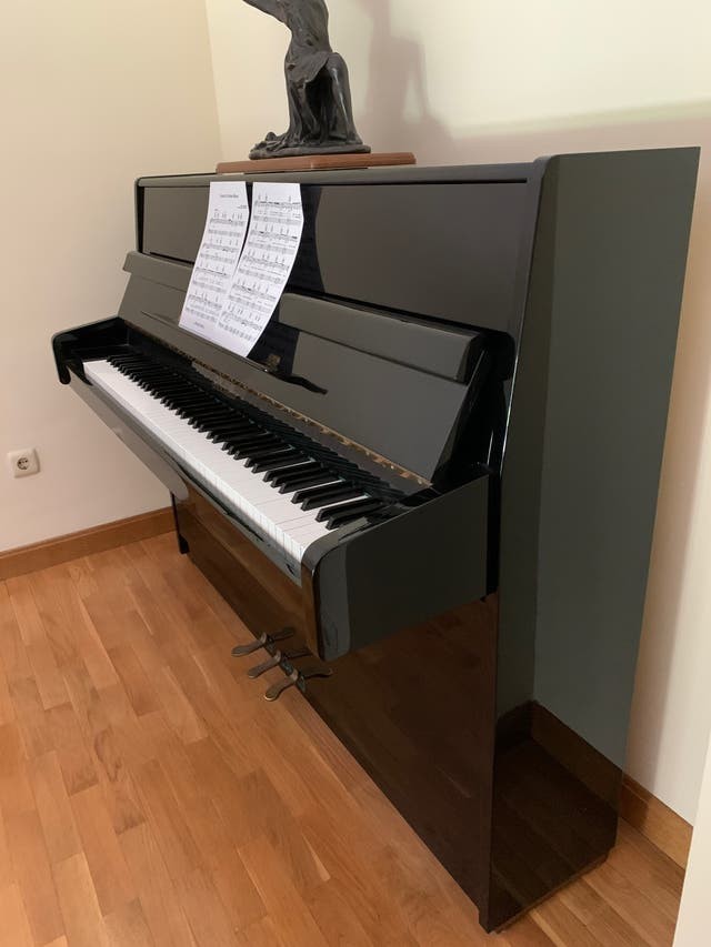 OPORTUNIDAD Piano negro de pared J. Schiller