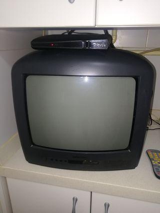 televisión thompsom
