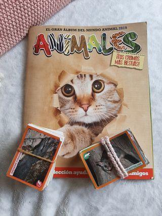 cromos album animales 2019