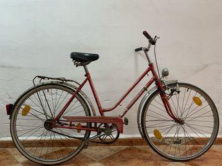Bicicleta paseo puch
