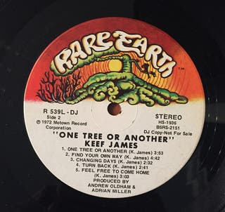 Vinilo - Keef James - One Tree or Another
