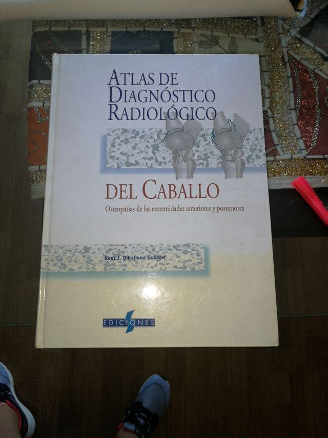 Atlas de diagnóstico radiológico del Caballo