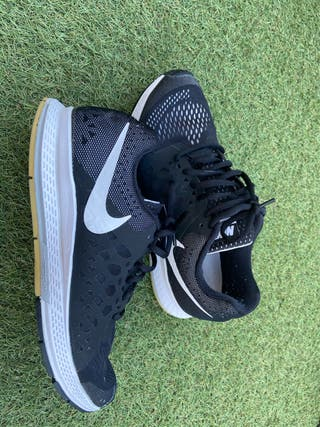 Zapatillas Nike, modelo Pegasus 31