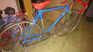 bicicleta antigua de carrera . lleva ruedas zeus