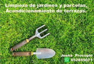 Limpieza de jardineria y parcelas