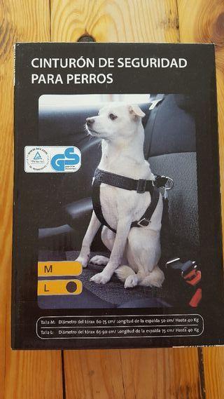 Cinturón de seguridad perros