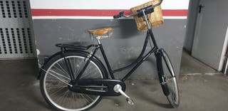 bici paseo holandesa