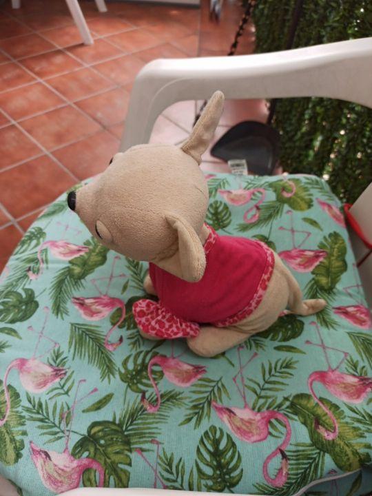 Perrito Chichi Love