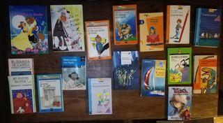 Libros infantiles (Para Primaria)