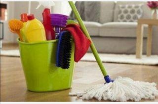 limpieza de hogar 3 horas 25 €