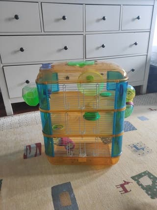 Casa enorme hamster