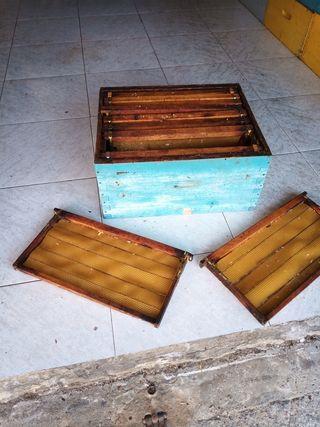 alzas-cajas de enjambres-colmenas con cuadros