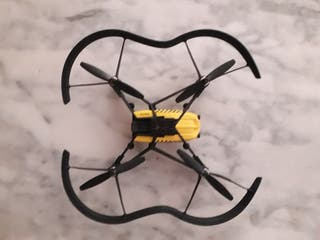 Drone parrot taxi